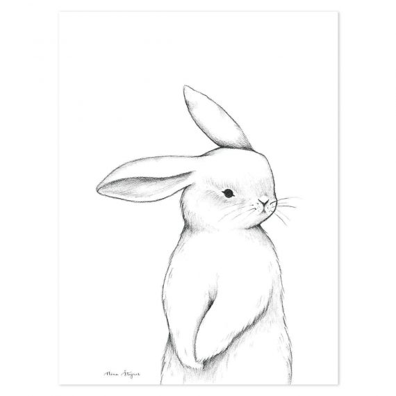 Bunny Front View Poster – 30×40 cm